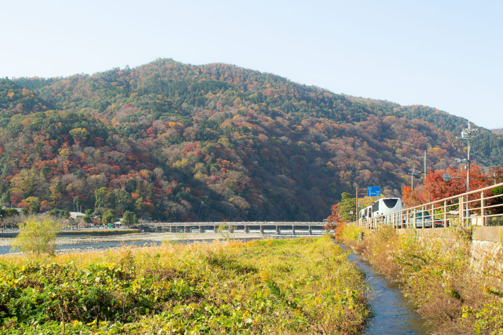 嵐山渡月橋紅葉