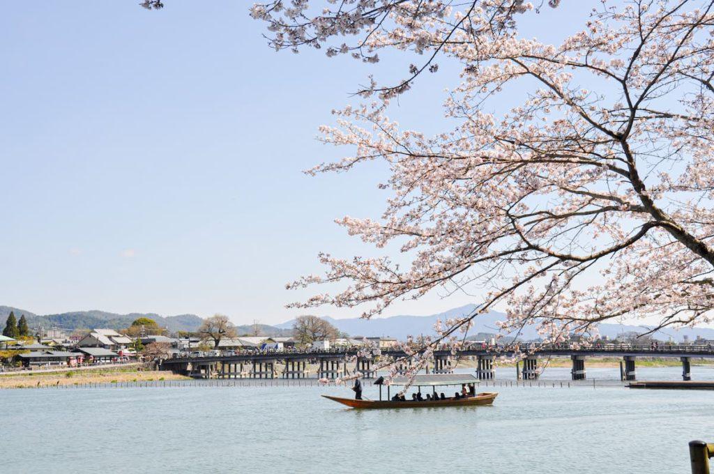 嵐山屋形船桜